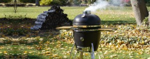 Saffire Grills – Learn More Today!