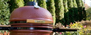 Saffire Griller Shares All